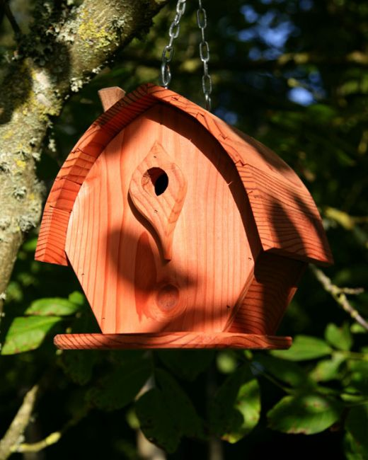 Swell Barn Birdhouse Interior Design Ideas Philsoteloinfo
